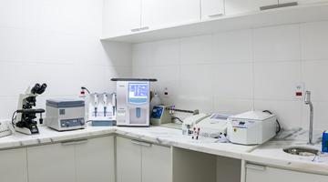 Veterinário 24 Horas em Cotia